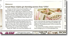 Nava Designs in the Detroit Free Press