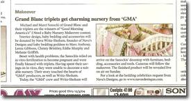 Nava Designs in the Detroit Free Press